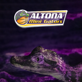 Altona Mini Gators